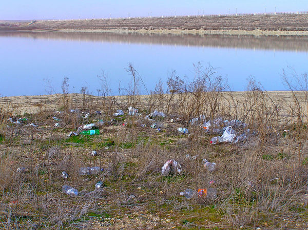 Bottles Contaminated Contamination Day Dirt Dirty Environment Environmental Environmental Damage Environmental Issues Garbage Nature Outdoors Plastic Polluted Pollution Pollution In My World Refuse Sky Social Issues Trash Waste Wasted