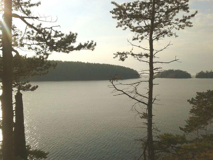 Water Valaam Island Lake Landscape