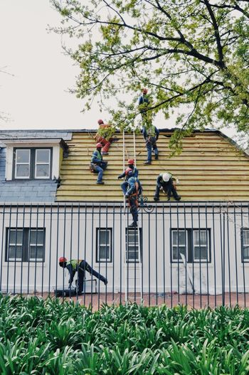 Ladder Roof Workers Architecture Building Exterior Built Structure Day Growth House Lifestyles Low Angle View Men Outdoors People Plant Real People Roof On L Sky Togetherness Tree Workers At Work