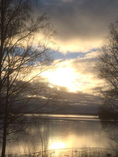 131216 Degerby, Finland.