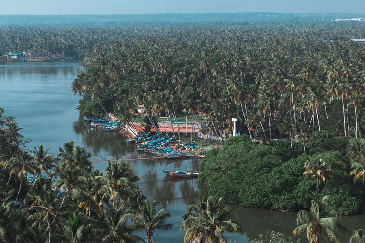 land of coconut trees .. Kerala Tadaa Community Exploring Wanderlust Vacations Travel Destinations Travel Backwaters River Fisherman Boats Coconut Trees Infinity Landscape Lighthouse View Green Color Water Tree High Angle View Outdoors Growth Day Lake Sky No People Nature Beauty In Nature Scenics Architecture Summer Exploratorium