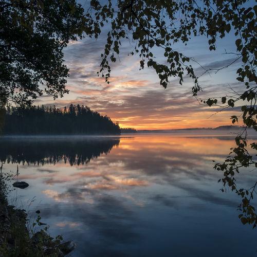 Scenic sunrise landscape at idyllic lake in Hyvinkää, Finland Beauty In Nature Cloud - Sky Fog Foggy Framed Idyllic Lake Landscape Leaf Leaves Light Mist Misty Morning Sun Nature Outdoors Reflection Scenics Sky Standing Water Sunrise Sunset Tranquil Scene Tree Water