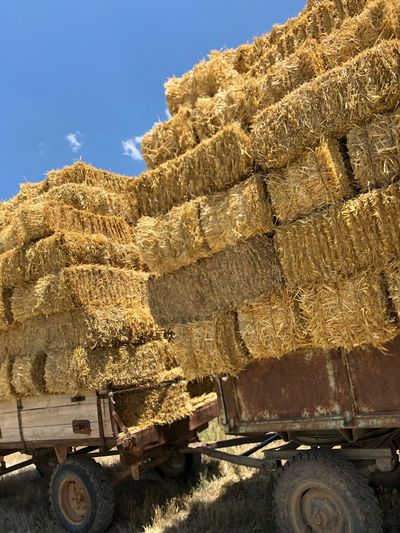 Stack of hay bales on trailer against sky