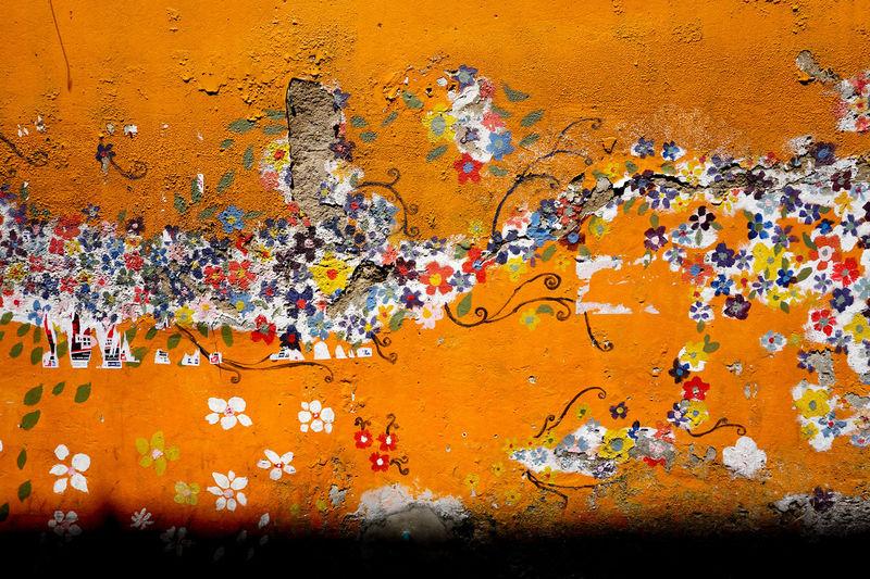Flower Painting Orange Wall Wall Art Wall Painting Multi Colored Paint Wall Flower Wall Paint