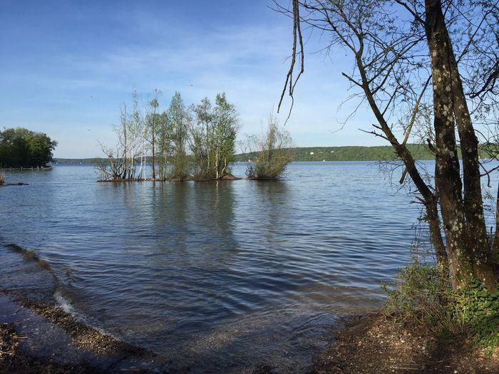 Starnbergersee See Lake Insel Ufer Bäume Und Himmel Birken Nature Wasser Outdoors