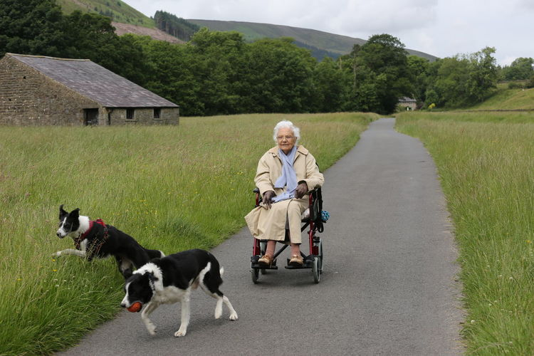 MATURE WOMAN IN WHEELCHAIR PLAYING WITH TWO DOGS