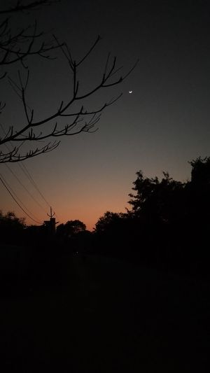 winter sunset Sunset In Urban Silhouette Moon Tree Night Astronomy Beauty In Nature Star - Space Sunset Bare Tree First Eyeem Photo