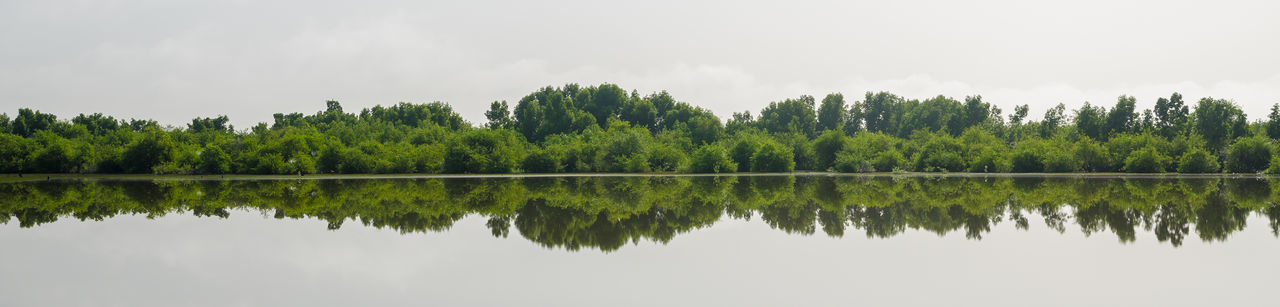 Panoramic view of lake with trees reflection of trees in lake against sky