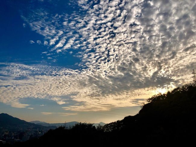 A Beautiful Cloudscape. (181111-181207) Sky Cloud - Sky Beauty In Nature Silhouette Tranquility Scenics - Nature Tranquil Scene Environment Non-urban Scene Nature Plant Tree Sunset Sunlight Idyllic Outdoors No People Low Angle View