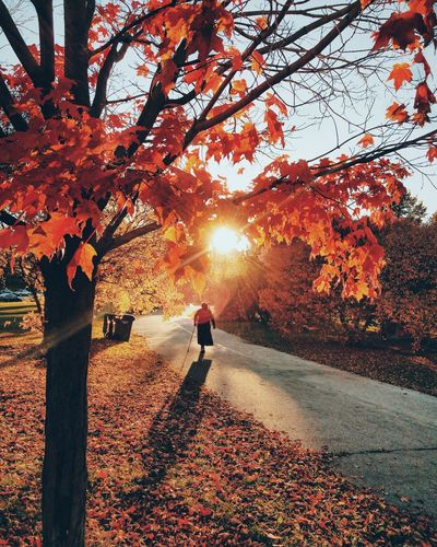 Rear view of amputee person walking on street during autumn