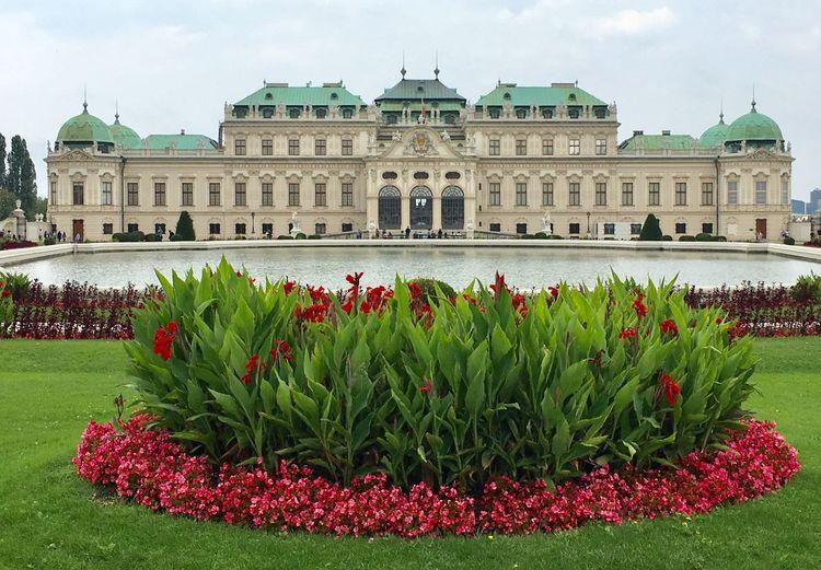 #Vienna #Belvedere Building Exterior Architecture Built Structure Plant Travel Destinations Garden The Past Palace Flower History
