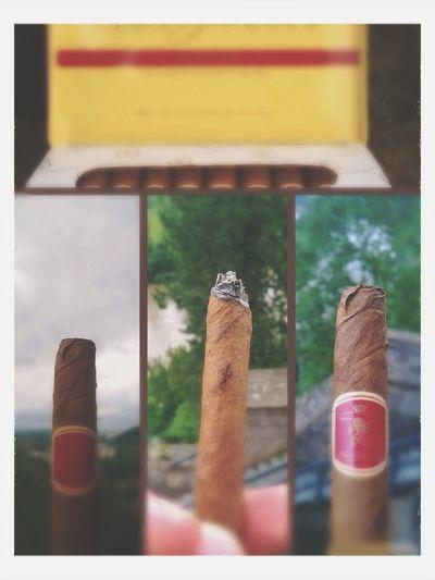 Schuljahr vorbei Zigarren Session