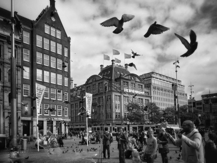 Pigeons at Damsquare in Amsterdam IPhoneography Sky Cityscape Built Structure Atmosphere Real People Leisure Activity City Life Day Netherlands Your Amsterdam