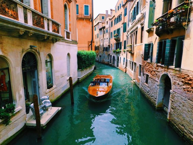 More boats... Nautical Vessel Canal Architecture Transportation Built_Structure Building Exterior Water Mode Of Transport Day Waterfront Window Bridge - Man Made Structure Moored Outdoors No People Houseboat Gondola - Traditional Boat Nature EyeEmNewHere Let's Go. Together.