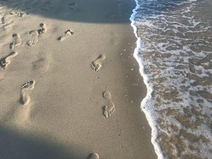 Beach Land Sea