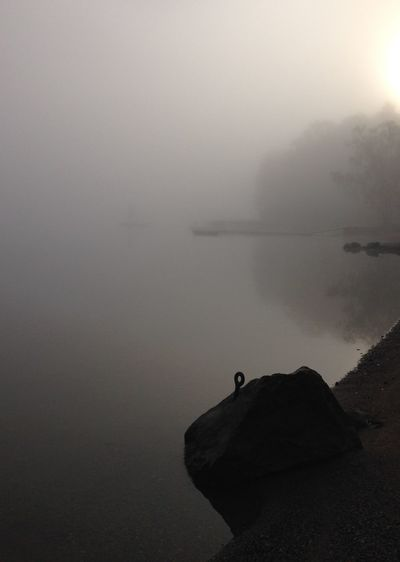 September morning fog Noedit Fog Over Water Stockholm Archipelago Melancholic Landscapes