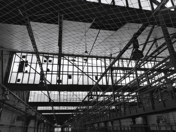 Luz industrial