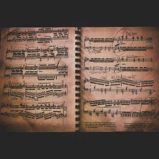 Poesia Music Classicalmusic Piano Liszt Valléedobermann