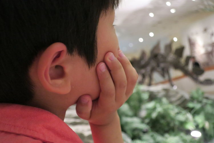 Close-up of boy in museum