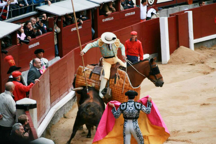 People Animals Travel Madrid Spain Color Bulls Matador Lifestyle Pain Excitement Terror Reality Real