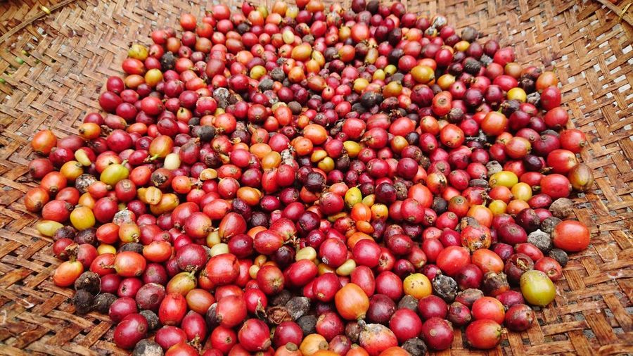 High angle view of raw coffee beans in basket