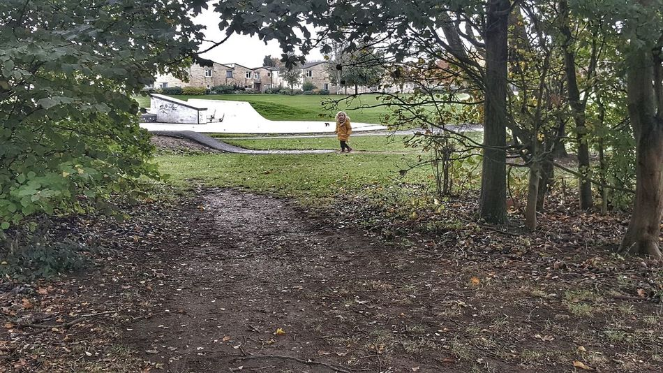 One Person Walking Real People Full Length Standing Day Outdoors Tree Grass Nature Growth Cambridge, United Kingdom Landscape Unexpected Photo Scenics Through The Trees Trees Skate Park My Son Child People Out And About Lost In The Landscape