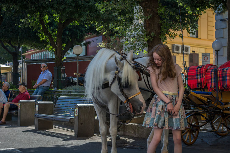 Young Woman Standing Next To Horse Carriage On The Street