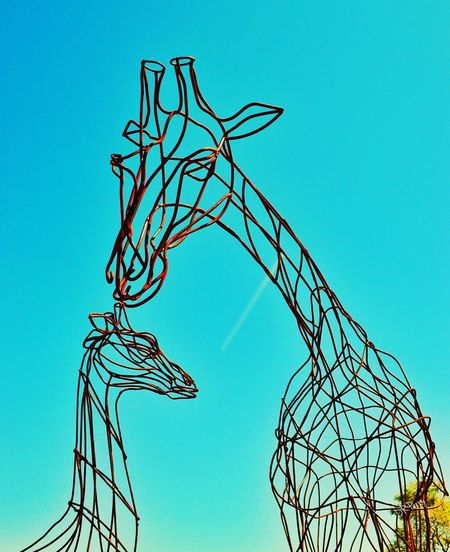 """Nurture in Wire"" Zoo Abilenezoo Texas Texas Skies Photobydperry Giraffe Sculpture Animal Wiresculpture Giraffe Sculpture"