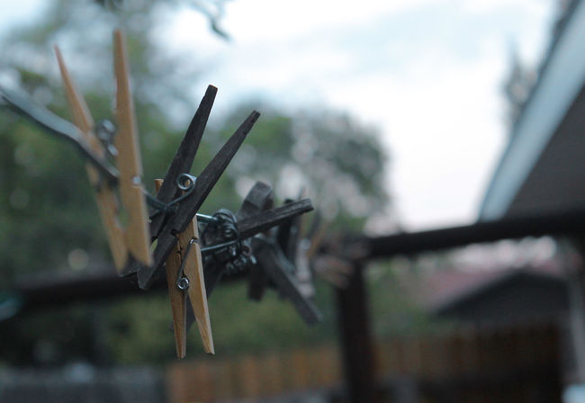 Perspective Close-up Clothesline Clothespin Day Focus On Foreground Nature No People Outdoors Sky Tree