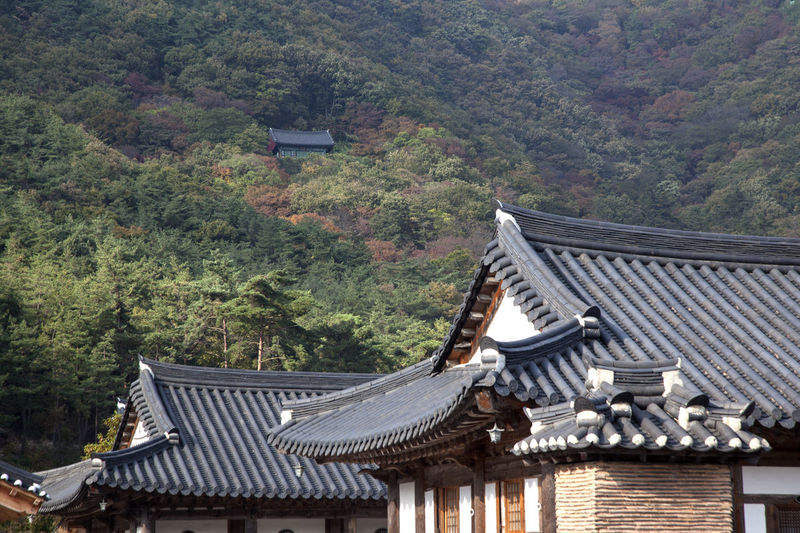 Roof of buddhism temple against mountain