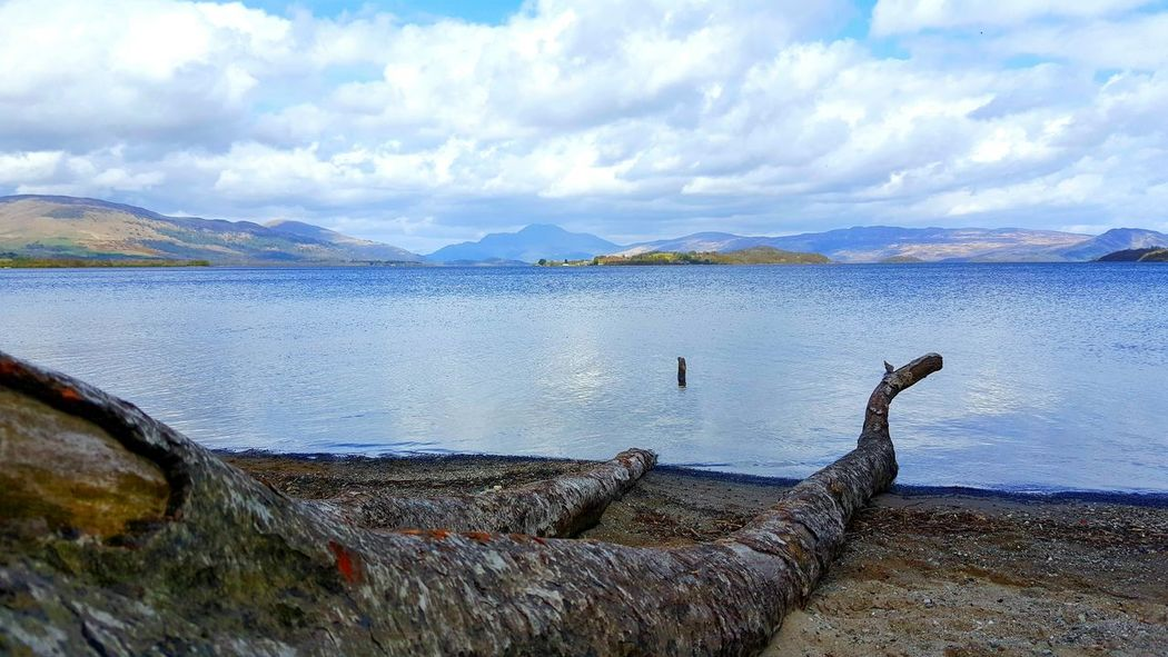 Loch Lomond, Scotland Photooftheday Check This Out Photographylovers LochLomond Scotland Scotlandlover Still Water Island View  Mountain View Mountains And Sky Mountain_collection Beachphotography Beachlovers Fallen Tree Tree Trunk Treeinwater
