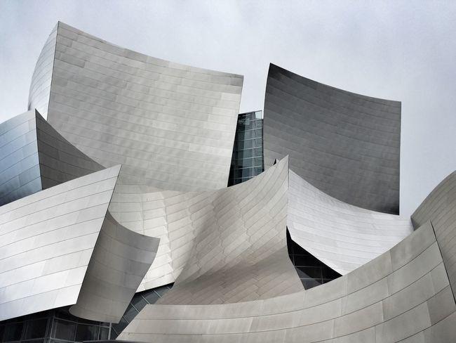 Curves California Dreaming Shootermag_usa Disney Concert Hall Minimalism Minimalobsession Showcase April The Architect - 2016 EyeEm Awards