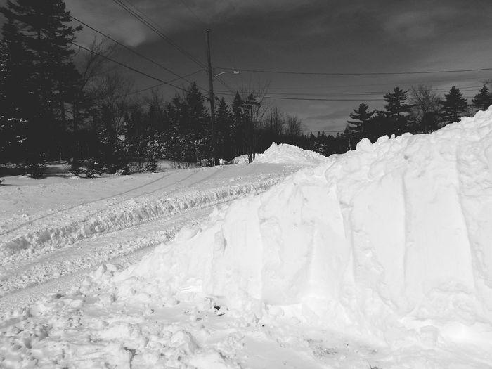 My street Snow ❄ Snow Bank Lotsosnow Snowy Halifax Winter Cold Days Winter Cold Winter ❄⛄