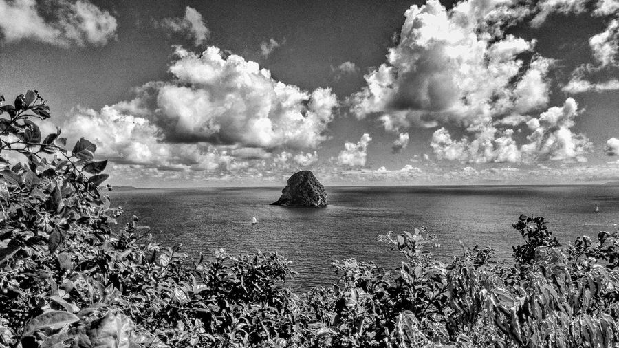 Martinique Beauty In Nature Cloud - Sky Day Diamond Rock Flower Growth Horizon Over Water Nature No People Outdoors Plant Scenics Sea Sky Tranquil Scene Tranquility Water