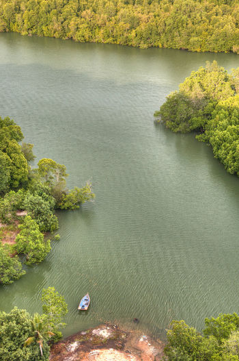 High Angle View Of Lake In Forest