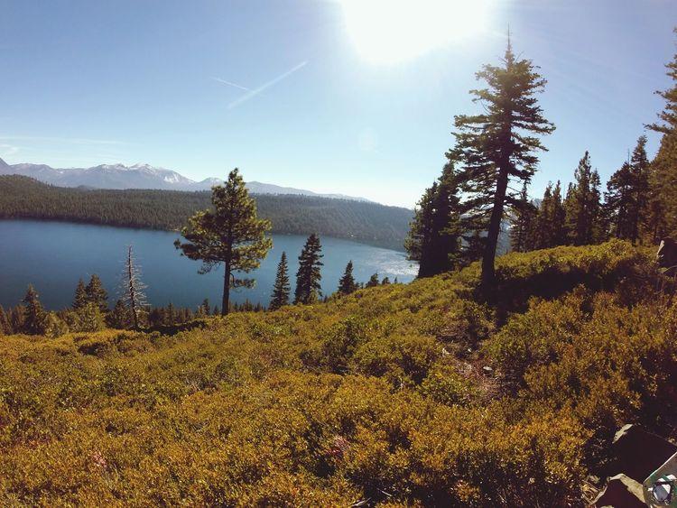 Lake Lake Tahoe Hiking Nature Adventure Hello World Mountains