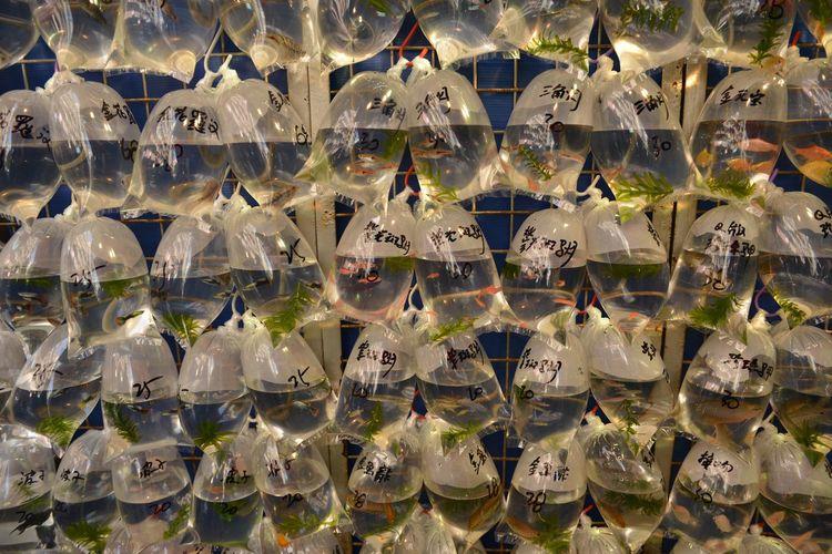 Full Frame Shot Of Goldfish In Plastic Bags For Sale At Market