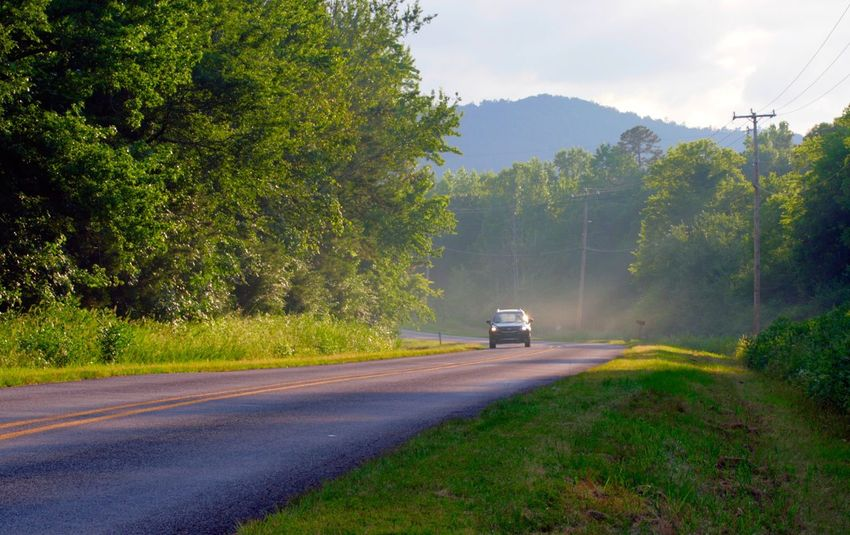 Original Experiences Travel Car On Road Ouachita National Forest Open Road Trees Arkansas Nature Greenery Canon Rebel Xti