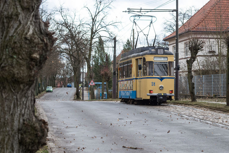Oldtimer. Tree Street Outdoors Bare Tree City Day Public Transportation Tram Sky No People Streetphotography