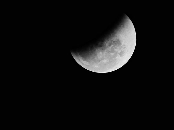 Half moon Eclipse Moon Night Astronomy Beauty In Nature Nature Scenics Moon Surface Planetary Moon Half Moon Copy Space Dark Idyllic Tranquil Scene Tranquility Low Angle View Outdoors Sky No People Clear Sky Crescent