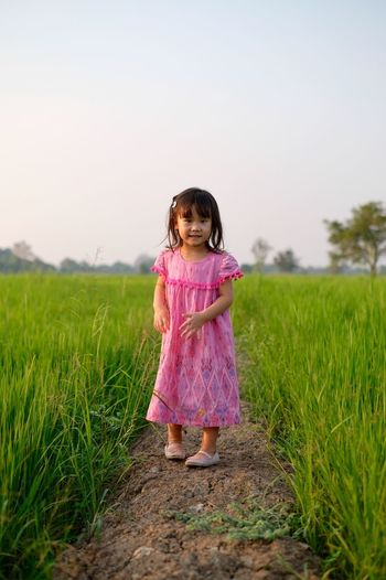 The little girl is walking in the rice field and the evening sun light Kids Walking Sunlight Field Rice Playing Childhood Girls Child Full Length Grass Women Field Females Plant Land Innocence Pink Color Real People Sky One Person Nature Standing Front View Offspring Outdoors