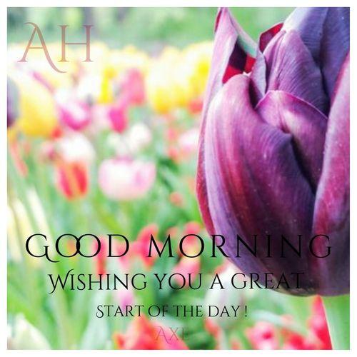Axe Office Axe Arxhitecture Axe Axe Tehran Axekish Goodmorning Good Good Times Good Morning World! Good Wishes