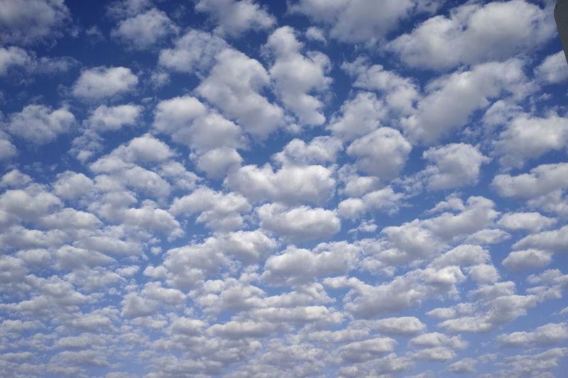 Viele Schäfchenwolken an blauem Himmel Blauer Himmel, Weiße Wolken Nature Schäfchenwolken Sommer Sonne Weitwinkelige Perspektive Wetter Wolken Wolkenhimmel