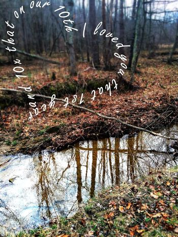 Water Reflections Nature Loveofmylife ♥ So Many Memories Lonely Anniversary