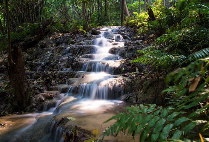 Chiang Rai, Thailand Beauty In Nature Blurred Motion Chiangrai Day Flowing Water Forest Long Exposure Motion Nature No People Outdoors Pu Kang Waterfall Scenics Tranquil Scene Tranquility Tree Vacations Water Waterfall