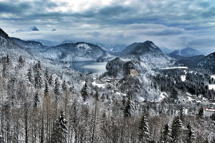 The view is wonderful, from hereNeuschwanstein Neuschwanstein Castle Disney Disney Castle Bavarian Alps Bavarian Landscape Winter Cold Nature Snow Woods Beauty Panorama Romantic Romantic Landscape Places Germany High Atmosphere Travel Lake Holidays Discover  Explore