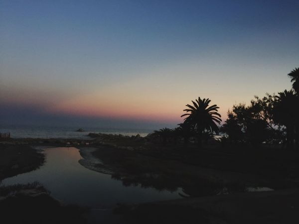 { Sunset San Benedetto Del Tronto Palm Trees }