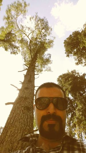 Day out. Selfie Tree Jungle Breeze Summertime Summershots Summer Sunlight Beautiful Nature Lovely Weather