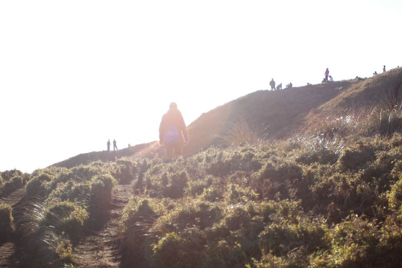 Adventure Club Mt Pulag Trekking Hiking Nature Sunshine Mountain Connected By Travel