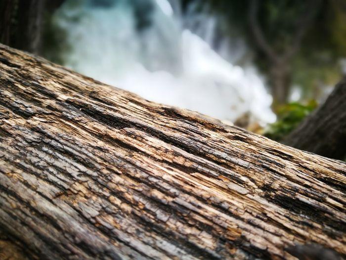 Mountain Tree Wood - Material Close-up Waterfall Log Tree Stump Flowing Water Stream - Flowing Water